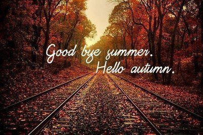 autumn is here time to reorganise be organised rh beorganised co nz